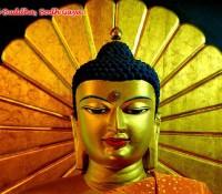 bodhgaya-tourism3